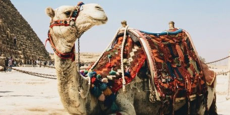 Горящие туры в Египет из Нур-Султана (Астаны)